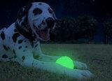 2 Glow Fetch and catch_