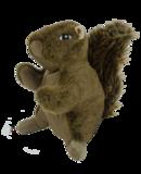 Wild Life Dog Squirrel (Eekhoorn)_